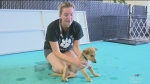 Renee Rodgers shows you how dogs rehabilitate from