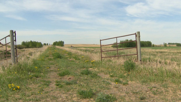 It may not look like much right now, but a group made up of residents from Beiseker and Irricana, want to build a formal trail linking their two communities.