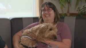 Michelle Bonnenfant acquired her service dog, Freddy, after she suffered a brain injury.