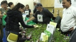 Sudbury horticultural festival