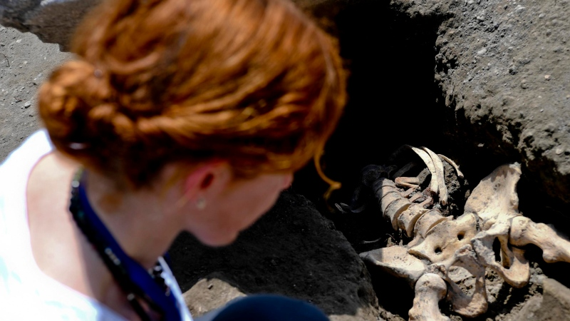 Anthropologist Valeria Amoretti looks at a skeleton of a victim of the eruption of Mt. Vesuvius in A.D. 79, which destroyed the ancient town of Pompeii, at Pompeii's archeological site, near Naples, on Tuesday, May 29, 2018. (Ciro Fusco/ANSA via AP)
