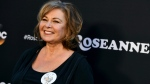 """FILE - In this March 23, 2018, file photo, Roseanne Barr arrives at the Los Angeles premiere of """"Roseanne"""" on Friday in Burbank, Calif. (Photo by Jordan Strauss/Invision/AP, File)"""