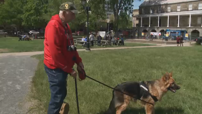 Rick Degruil, a former military police officer who developed PTSD while on the job, says his service dog 'Sarge' has helped save his life.