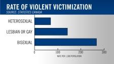 Bisexual violence statiscs