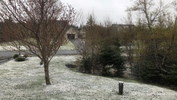 Winter-like weather in N.L.