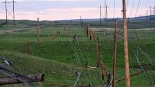 Downed power lines near Coronach, Sask.