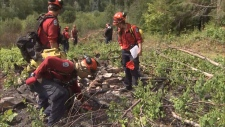 wildfire investigation training