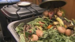 Composting can be really good for your garden