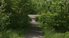 Cole Harbour pathway