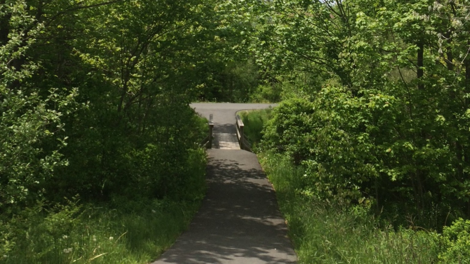 The RCMP say a 13-year-old girl was walking south on John Stewart Drive just before 7:30 p.m. Thursday when she was grabbed from behind and pulled by the arm onto this walking path.