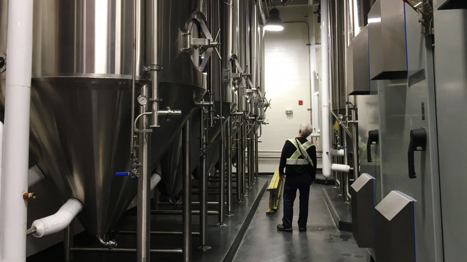 Staff examine equipment at the Moosehead small batch brewery in Saint John, N.B. on Friday, June 8, 2018. THE CANADIAN PRESS/Kevin Bissett