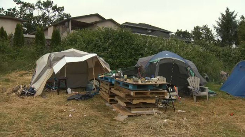 A tent city in Saanich has grown so large it's prompted a special meeting between Saanich politicians, police and fire officials. June 8, 2018. (CTV Vancouver Island)