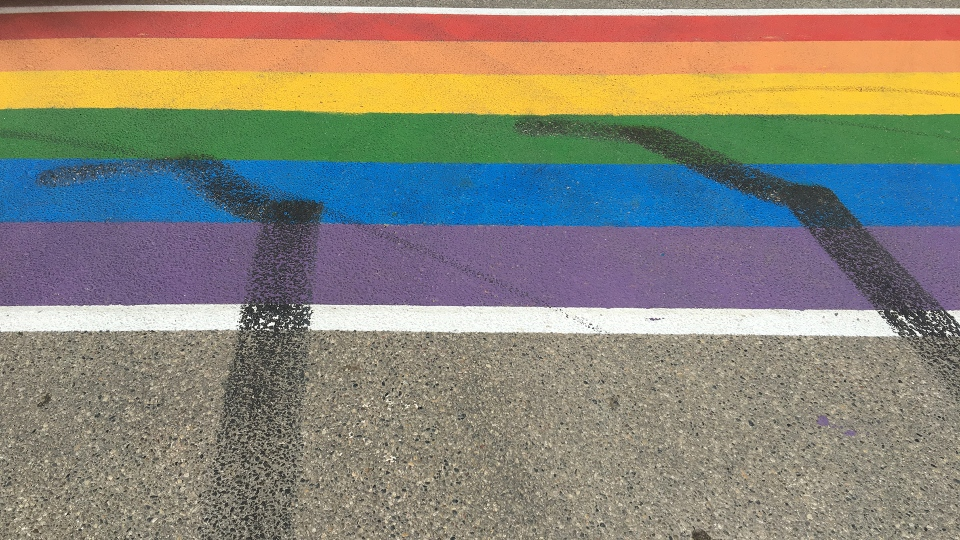 The crosswalk outside of Harbour Landing School in Regina. (GARETH DILLISTONE/CTV REGINA)