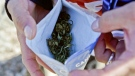 A man holds open a 10 gram bag of marijuana in this undated picture.