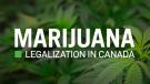 Marijuana Legalization in Canada news on CTVNews.ca
