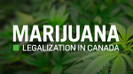 Marijuana Legalization in Canada news on CTVNews.ca