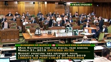MPs continue marathon voting session