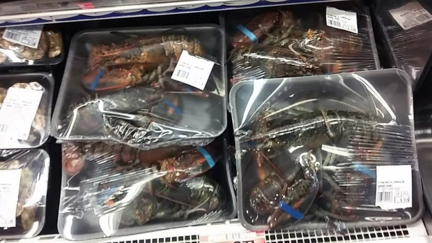 plastic-wrapped lobsters