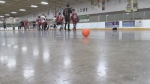 Ten local players were chosen to represent Canada in this summer's world ball hockey championships.