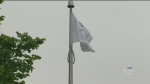 Flag-raising marks Brain Injury Awareness Month