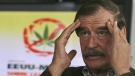 File - In this July 18, 2013, file photo, Mexico's former president Vicente Fox speaks during a news conference on the first day of the U.S.-Mexico Symposium on Legalization and Medical Use of Cannabis in San Francisco del Rincon, Mexico. (AP Photo/Mario Armas, File)