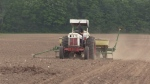Dry conditions are concerning farmers
