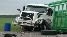 Transport truck, pickup truck collide head-on
