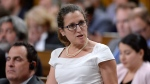 Foreign Affairs Minister Freeland testifies