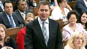 Scheer: Why no contingency plan in budget?