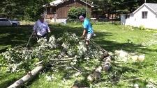 CTV London: Storm damage