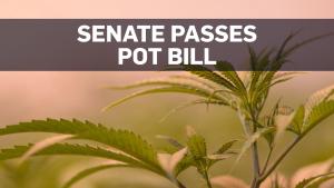 Canada's Senate has passed cannabis bill