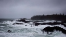 Waves crash against rugged rocks along the Wild Pacific Trail in Ucluelet , on Friday, Jan. 19, 2018. THE CANADIAN PRESS/Melissa Renwick