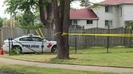 CTV Windsor: Everts Ave homicide
