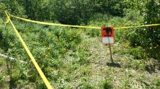 A bear sign and police tape mark a site near a bear attack near Eagle River, Alaska, Wednesday, June 20, 2018. (AP Photo/Mark Thiessen)