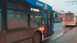 Some concerned with bus rapid transit plan