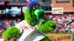 In this April 5, 2018 photo, the Phillie Phanatic reacts prior to the first inning of a baseball game against the Miami Marlins in Philadelphia. (AP Photo/Chris Szagola)