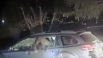 Watch this officer break a bear out of a car