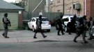 T.O. police update on dozens of raids executed