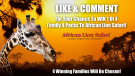 African Lion Safari contest