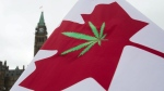 In this April 20, 2015 file photo, a Canadian flag with a cannabis leaf flies on Parliament Hill during a 4/20 protest in Ottawa, Ontario. (Adrian Wyld/The Canadian Press via AP, File)
