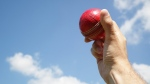 A man holds a cricket ball in the air (Brian A Jackson/shutterstock.com)