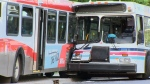 Two Calgary Transit buses crashed in the southwest of the city on June 22, 2018.