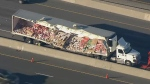 Yogurt spill on Highway 401