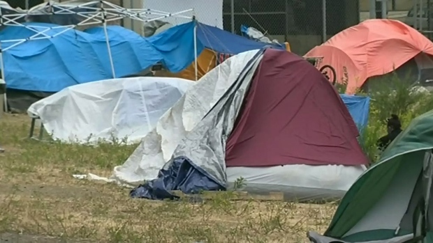 Nanaimo seeks court order to shut down tent city