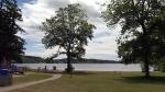 Oxygen could solve algae problem at Elk Lake