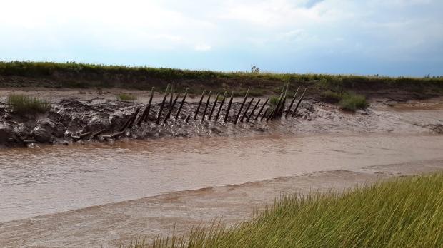 Nova Scotia dike