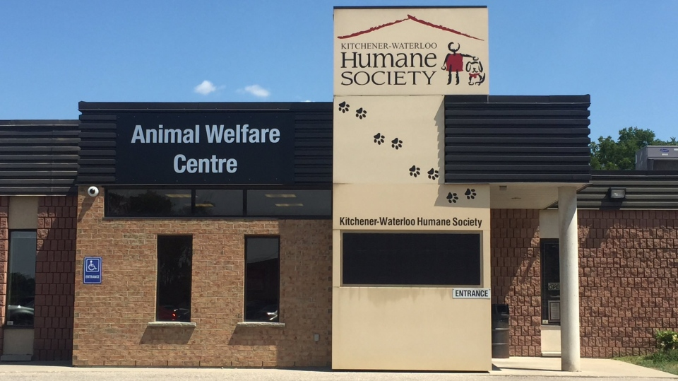 The Kitchener-Waterloo Humane Society building is pictured on Wednesday, July 27, 2016. (Victoria Levy / CTV Kitchener)