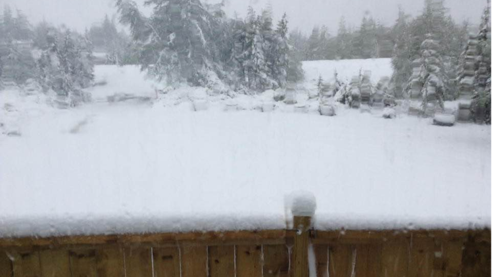 A layer of snowfall has blanketed parts of Newfoundland in the first few days of summer. (John Jack Lushman/Facebook)