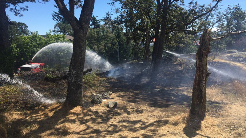 A brush fire briefly shut down a major traffic route in Saanich as crews tried to extinguish the flames. June 26, 2018. (Twitter/@SaanichFire)