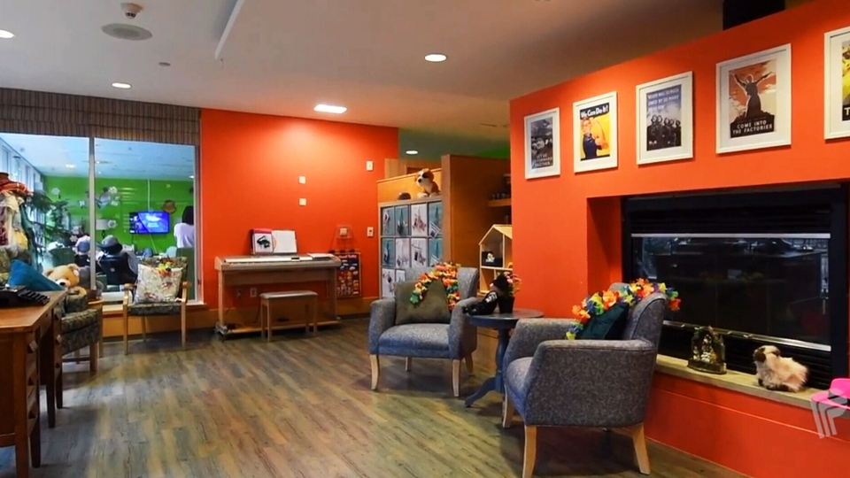 A room inside the care home, covered in bright colours and cheerful photos that trigger positive memories.